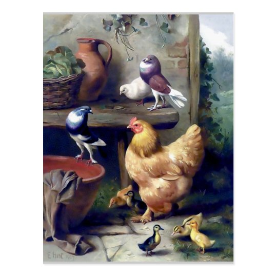 Farm birds hen ducklings pigeons painting postcard