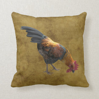 Decorative Pillows With Chickens : Chickens Cushions - Chickens Scatter Cushions Zazzle.co.uk
