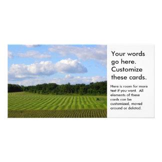 Farm field striped land farmer harvesting photo customised photo card