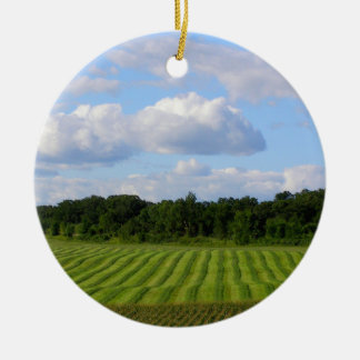 Farm field striped land farmer harvesting photo round ceramic decoration