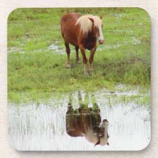 Farm Horse Checks It's Reflection by DJONeill Beverage Coasters