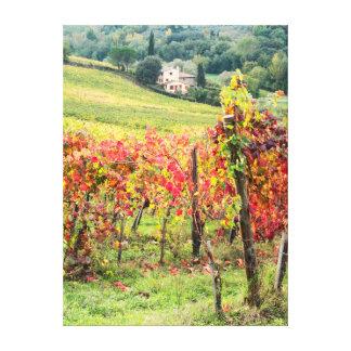Farm house and vineyard canvas print