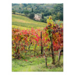 Farm house and vineyard poster