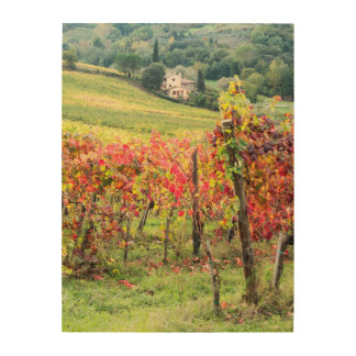 Farm house and vineyard wood print