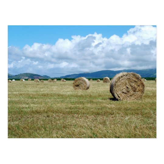 Farm landscape postcard