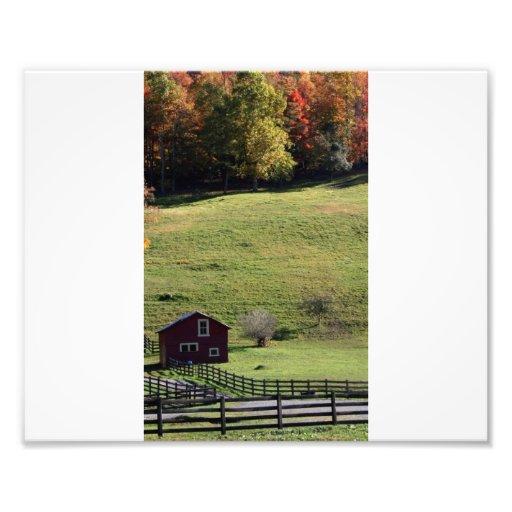 Farm Photo Art