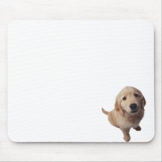 Farm small dog mouse pad