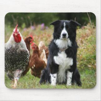 Farm Yard Family Photo Mousepad