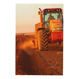 Farmer Planting Maize Using Tractor, Vaalkop 2 Wood Print