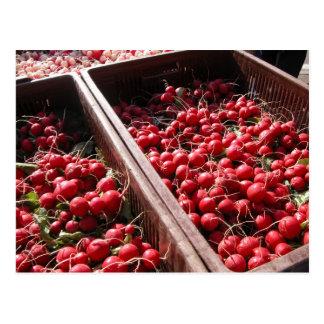 Farmer's market, Louans, Bresse, radishes Postcard
