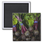 farmers market stand with various produce/ 2 magnet