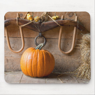 Farmers Museum. Pumpkin in barn with bale of hay Mouse Mat