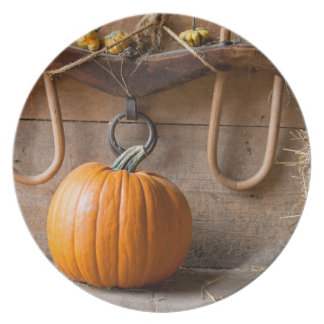 Farmers Museum. Pumpkin in barn with bale of hay Plate
