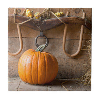 Farmers Museum. Pumpkin in barn with bale of hay Tile