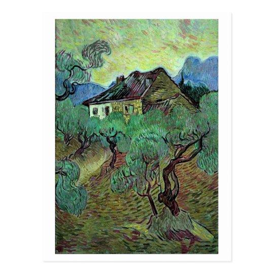 Farmhouse Among Olive Trees Van Gogh Fine Art Postcard