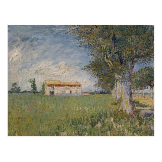 Farmhouse in a wheat field Postcard