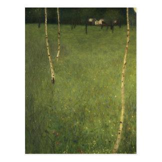 Farmhouse with Birch Trees, 1900 Postcard