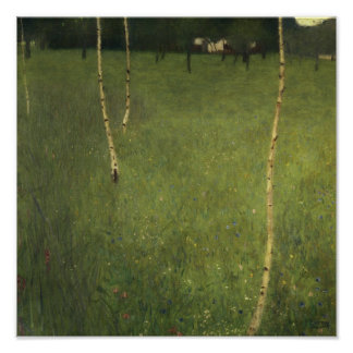 Farmhouse with Birch Trees, 1900 Poster