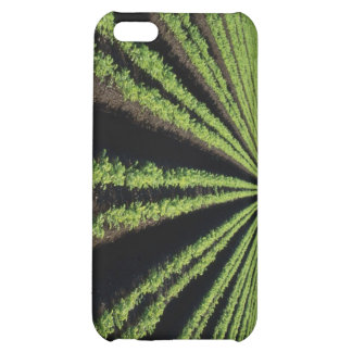Farming, crops, , Iphone case, soybeans, corn, FFA Cover For iPhone 5C