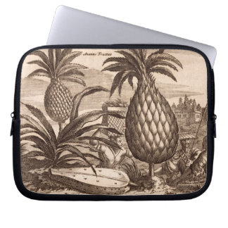 Farming Large Pineapples, illustration from a desc Laptop Sleeve