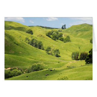 Farmland near Gisborne, New Zealand Card