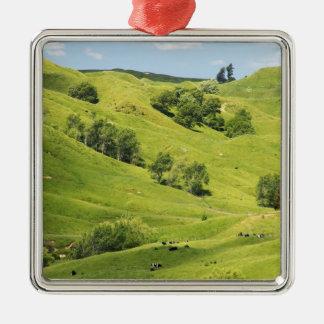 Farmland near Gisborne, New Zealand Christmas Ornament