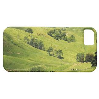 Farmland near Gisborne, New Zealand iPhone 5 Cover