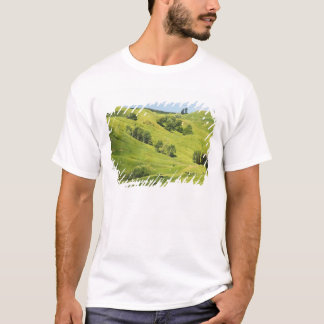 Farmland near Gisborne, New Zealand T-Shirt