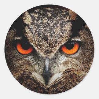 fascinating owl round sticker