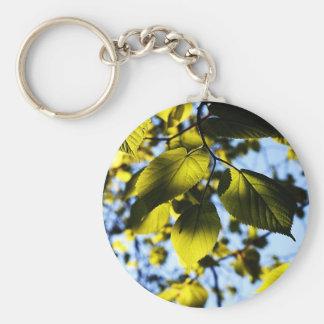 Fashion Art Solid Shiny Royal Rich Art Design Patt Key Ring