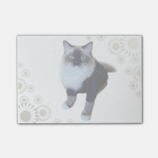 Fashion Cat Post-it Notes