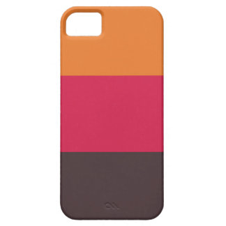 Fashion Stripes iPhone 5 Case iPhone 5 Cases