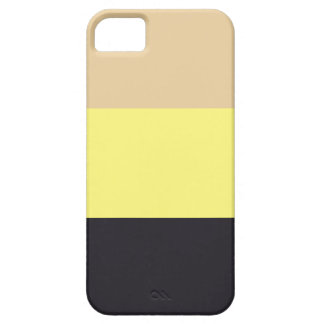 Fashion Stripes iPhone 5 Case iPhone 5 Covers