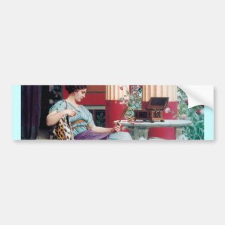 Fashion Woman Jewel Case Painting Bumper Sticker