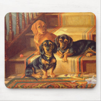 Fashionable Refinities Mouse Mat