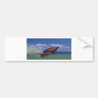 fast turtle bumper sticker