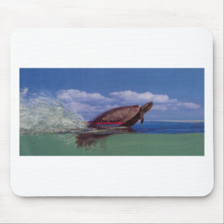 fast turtle mouse mat