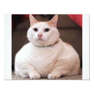 Fat Cat 11 Cm X 14 Cm Invitation Card