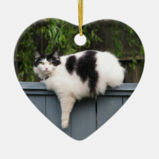 Fat Cat On Fence Christmas Ornament