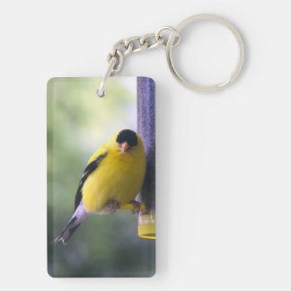 Fat Finch Key Ring