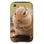Fat & Happy Chipmunk iPhone 3 Tough Cover