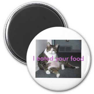 fat kitty magnet