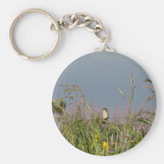 Fat little Hummingbird Keychain