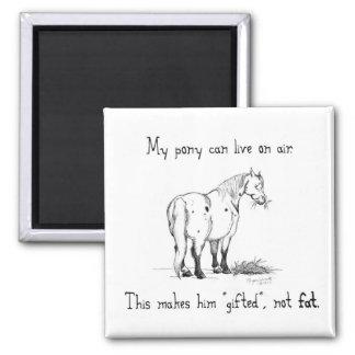 Fat Pony Magnet