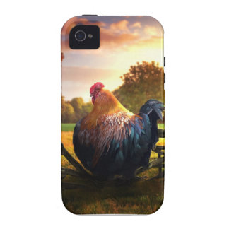Fat Rooster Vibe iPhone 4 Cases