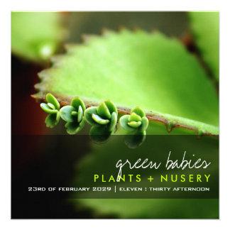 fatfatin Photography Baby Succulents Invitation