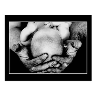 Father s Safe Protecting Hands Postcards