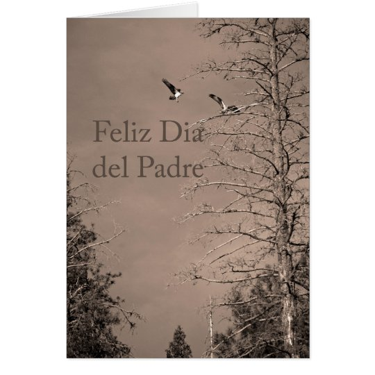 Father's Day In Spanish Card