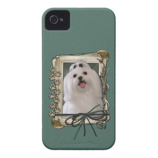 Fathers Day - Stone Paws - Maltese Case-Mate iPhone 4 Case