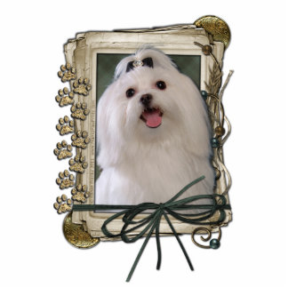 Fathers Day - Stone Paws - Maltese Standing Photo Sculpture